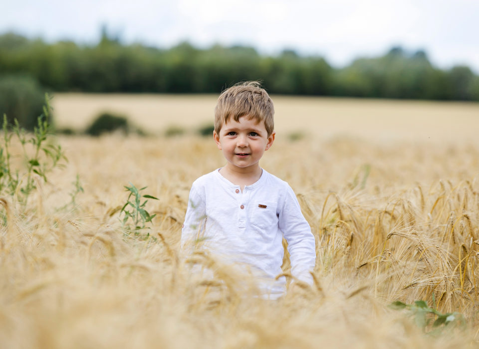 un petit garçon dans un champs de blé