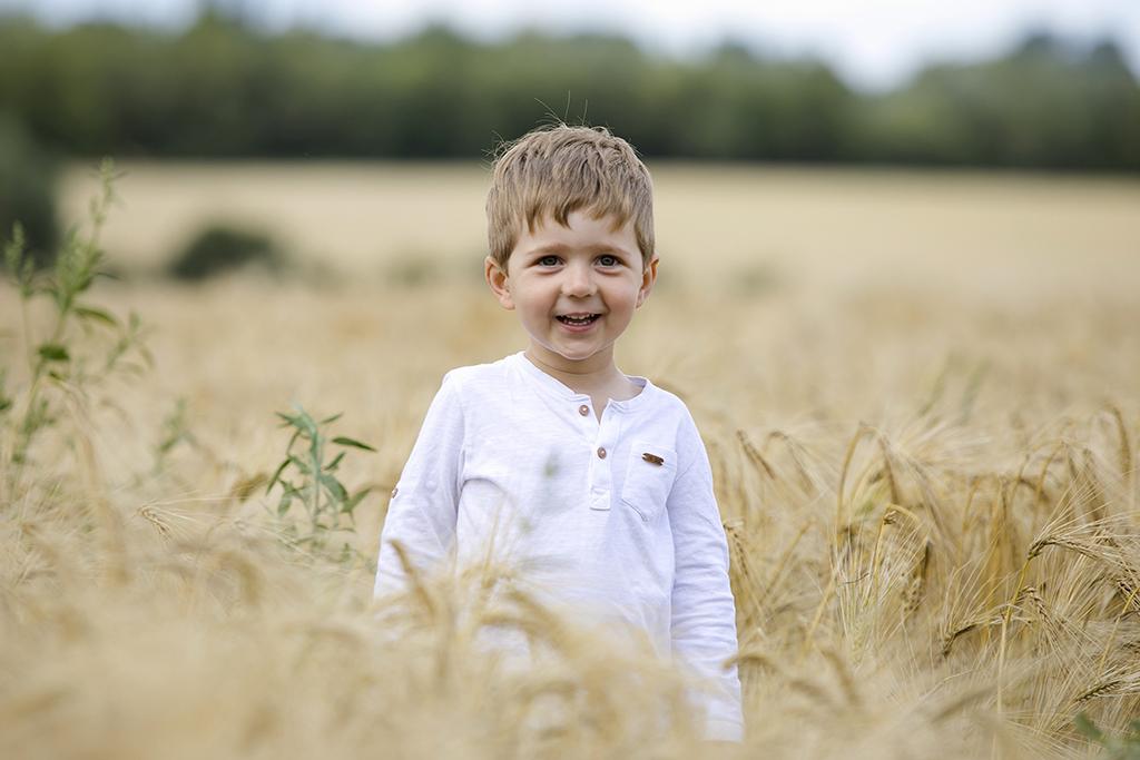 portrait d'un petit garçon dans un champs de blé