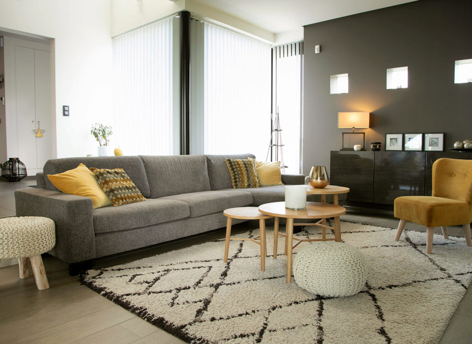 photo d'un salon pour une décoratrice d'intérieur